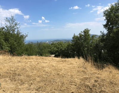 земельные участки алушта крым