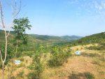 Продаётся земельный участок 8 соток, в г. Алушта, с. Генеральское