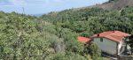 В продаже земельный участок в поселке Семидворье, уникальное экологически чистое место.