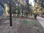 Уникальное коммерческое предложение в парковой зоне города Алушта!
