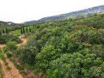 Продается земельный участок 8 соток в районе Алушты