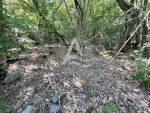 Продается земельный участок 600 м2 в массиве  «Оливковая роща»