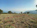 6 соток с шикарным видом на море с. Малореченское, г. Алушта